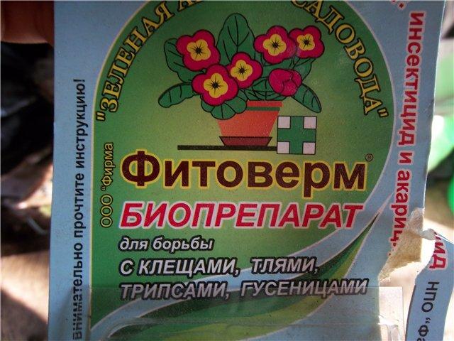 Фитоверм - популярное средство от паутинного клеща