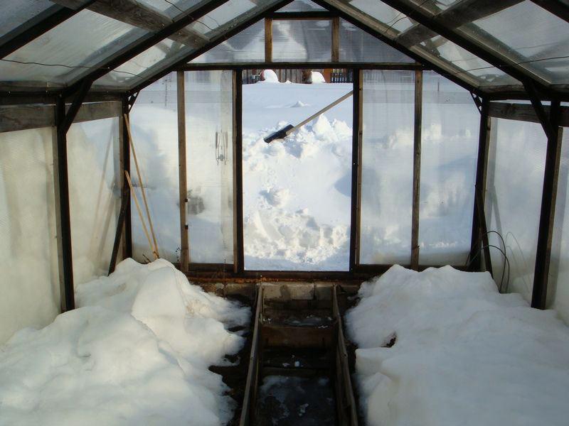 Как вариант - почву в теплице можно засыпать снегом