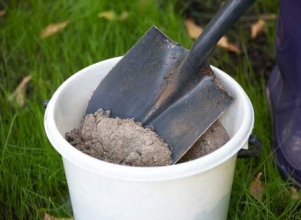 Найденный муравейник следует засыпать золой, известью или пеплом