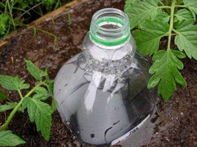 Пластиковая бутылка для капельного полива