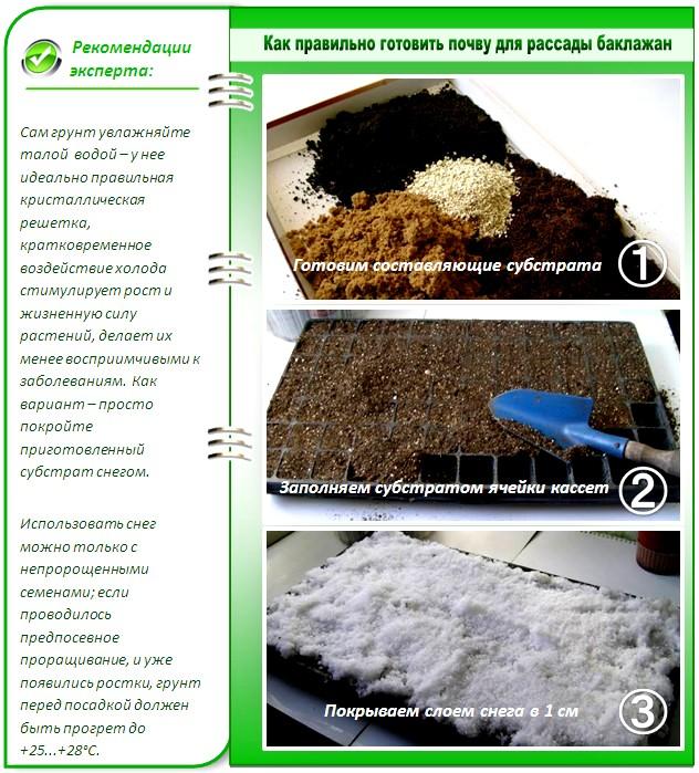 Подготовка почвы для рассады баклажан