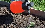 Подготовка почвы в теплице осенью под помидоры