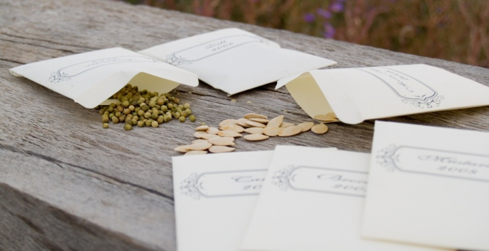 Семена всех культур нужно хранить в сухом месте, желательно в бумажных пакетиках