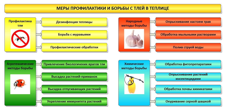 Схема борьбы с тлей