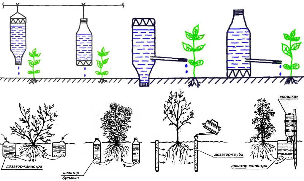 Способы устройства капельного полива из пластиковых бутылок и других емкостей