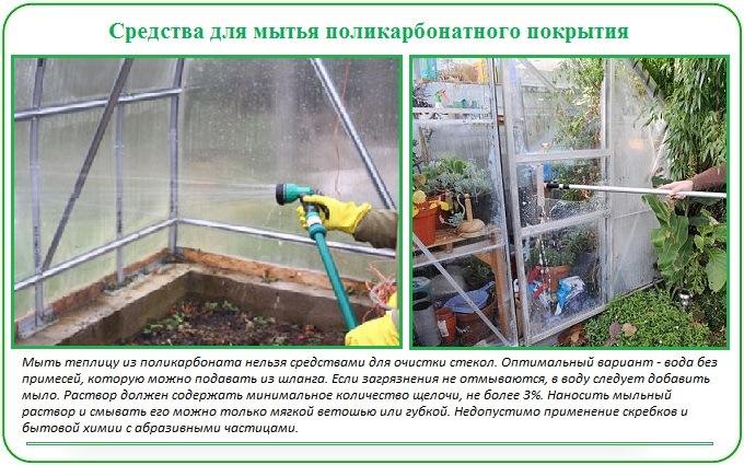 Средства для мытья теплицы из поликарбоната