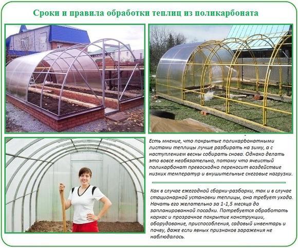 Сроки и правила обработки теплиц из поликарбоната