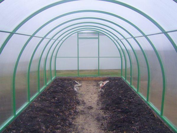 Замена верхнего слоя почвы в теплице