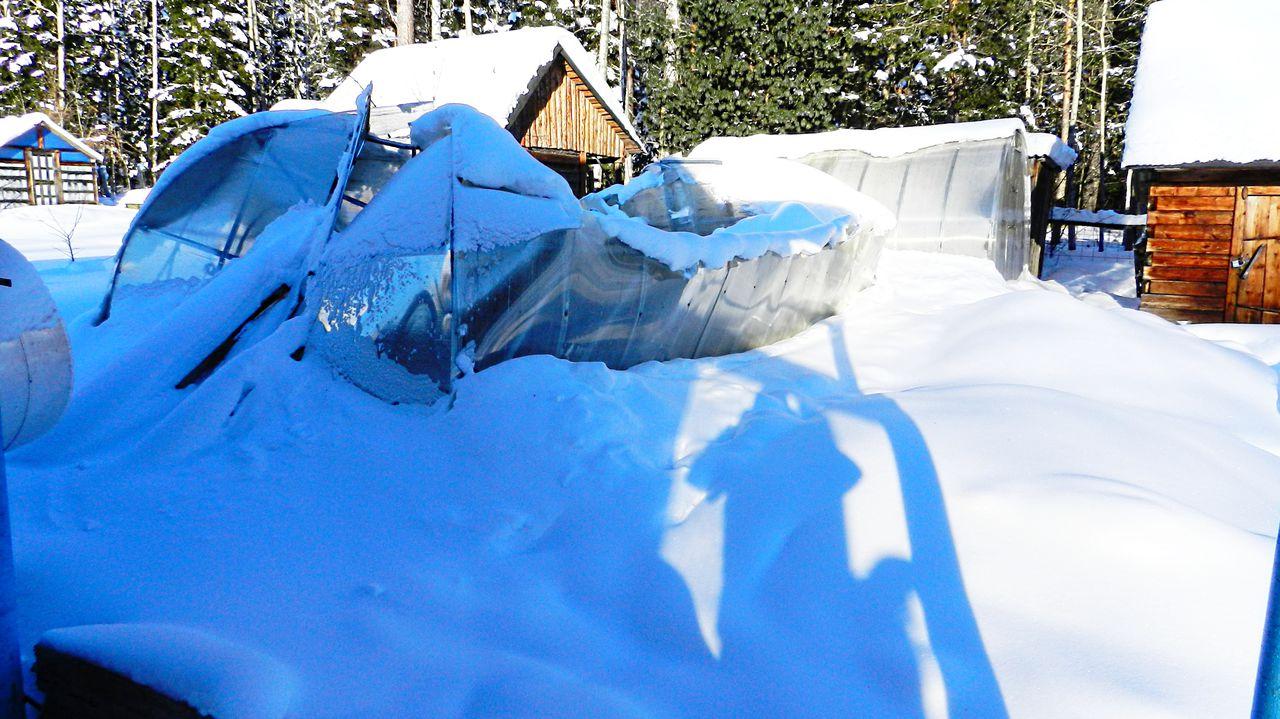 Фотография теплиц из дешевого сотового поликарбоната плотностью менее 0,7 кг/м2 без наружной УФ-защиты
