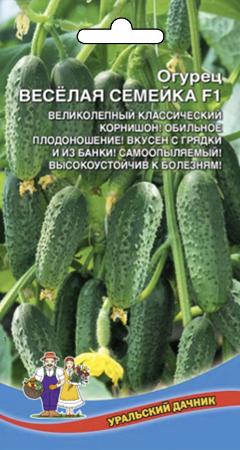 Огурец ВЕСЕЛАЯ СЕМЕЙКА F1