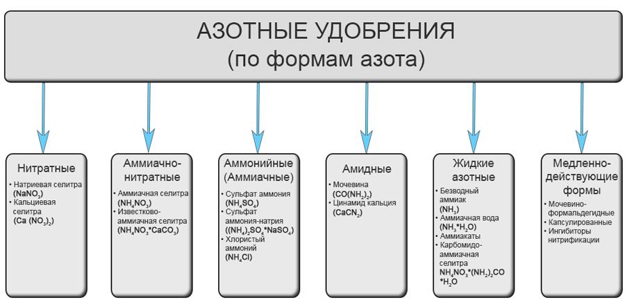 Азотные удобрения (по формам азота)