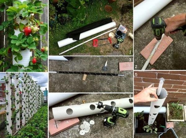 Другой вариант вертикального выращивания клубники в трубе