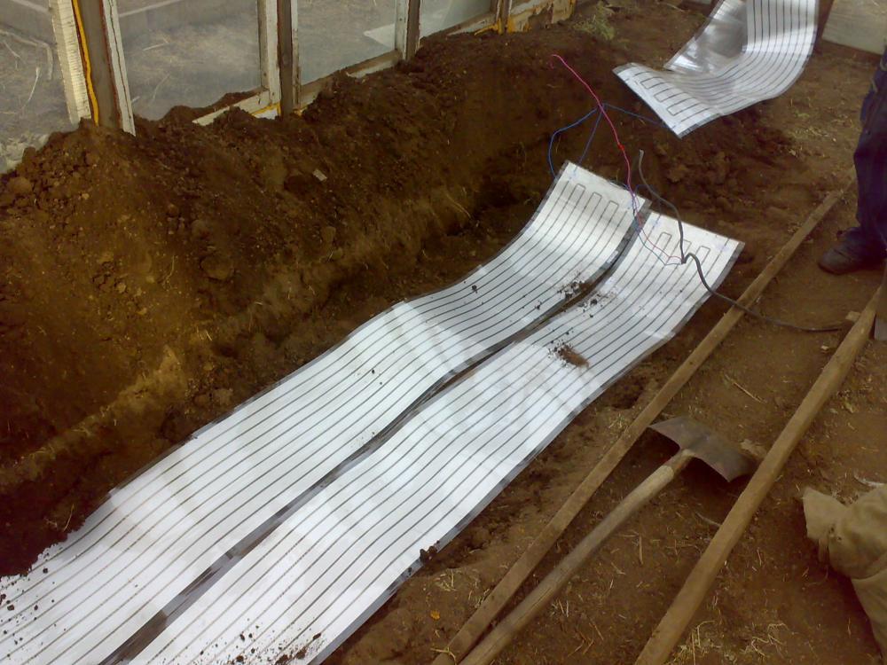 Инфракрасную пленку можно использовать для «нижнего» обогрева грунта теплицы либо укрывать ею растения сверху в очень холодные периоды