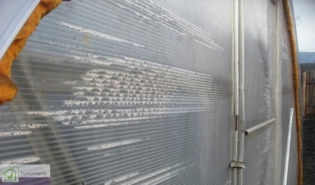 Конденсат в листе сотового поликарбоната