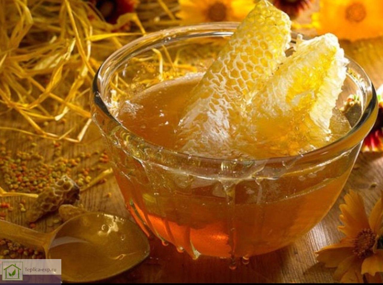 Мед имеет массу полезных свойств
