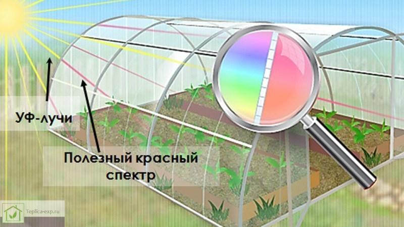Поликарбонат способствует тому, что свет распределяется равномерно по всей площади