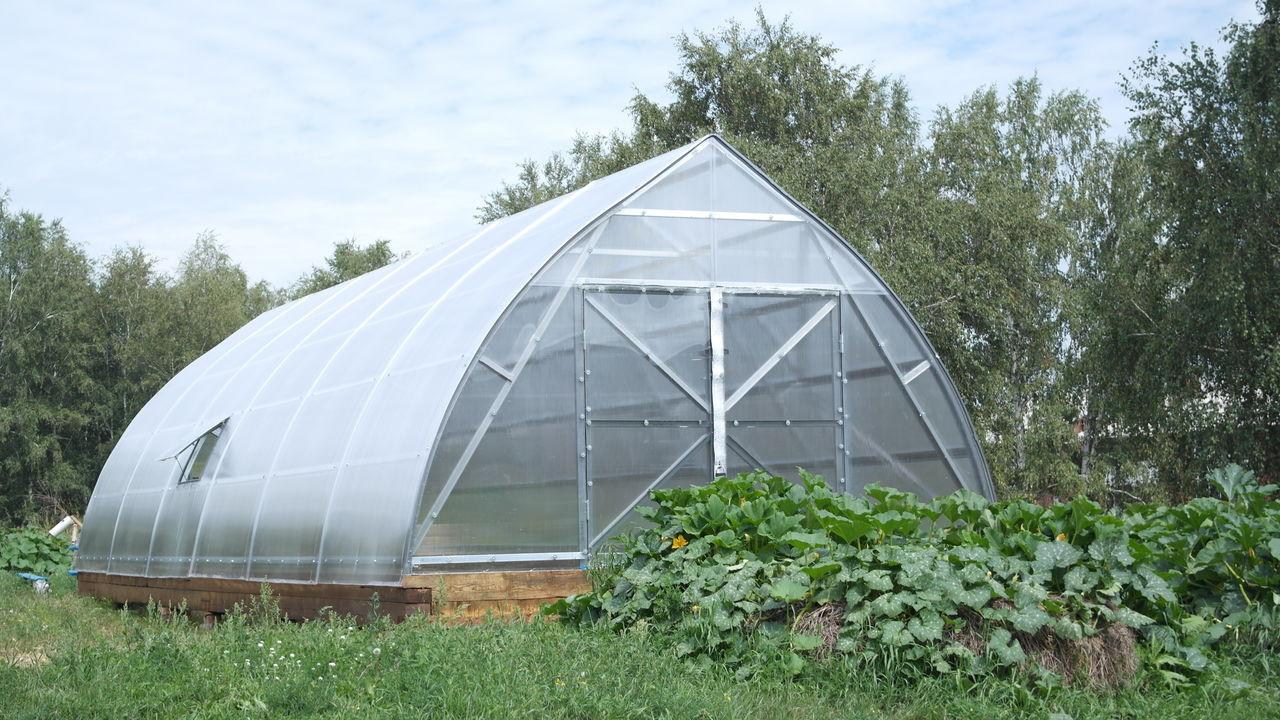 Промышленная теплица «Фермер»