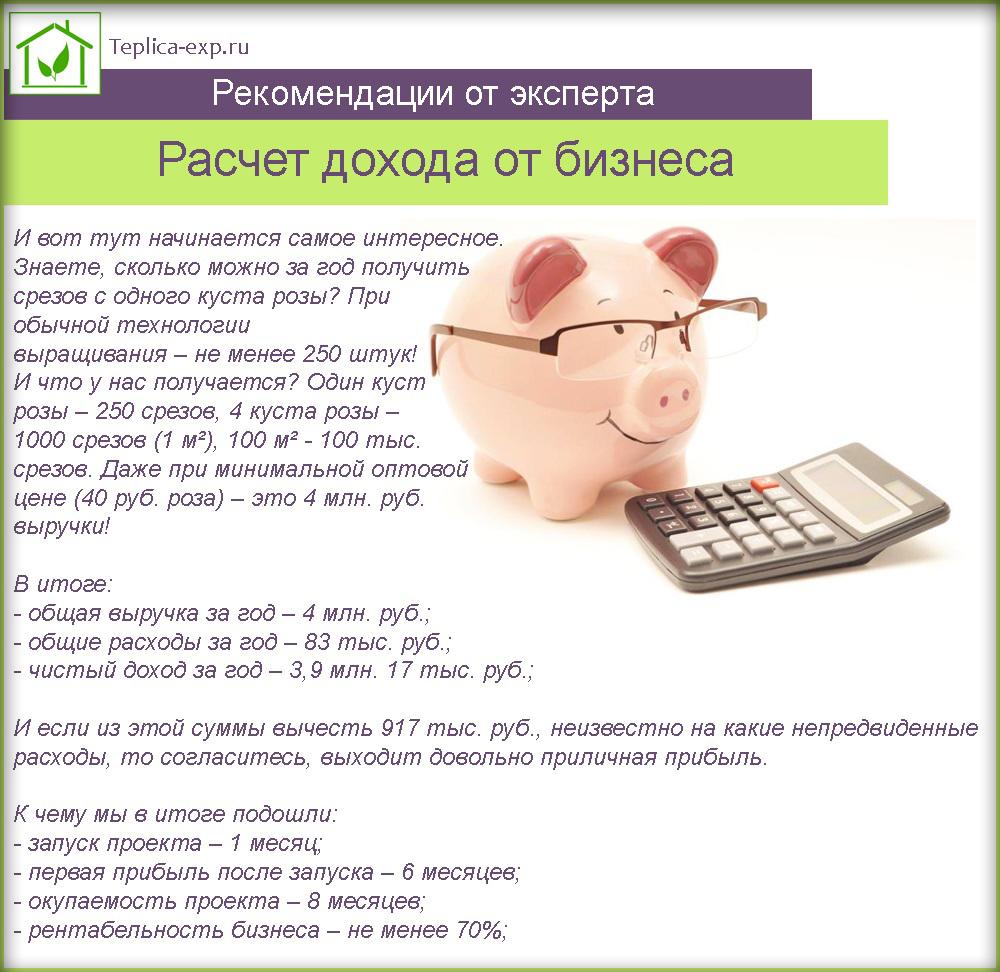 Расчет дохода