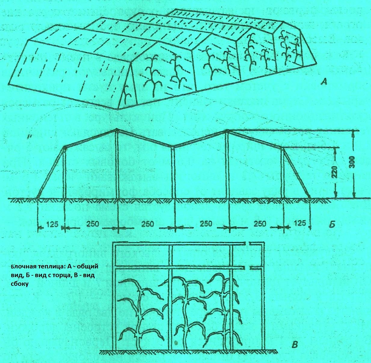 Схема примера теплицы