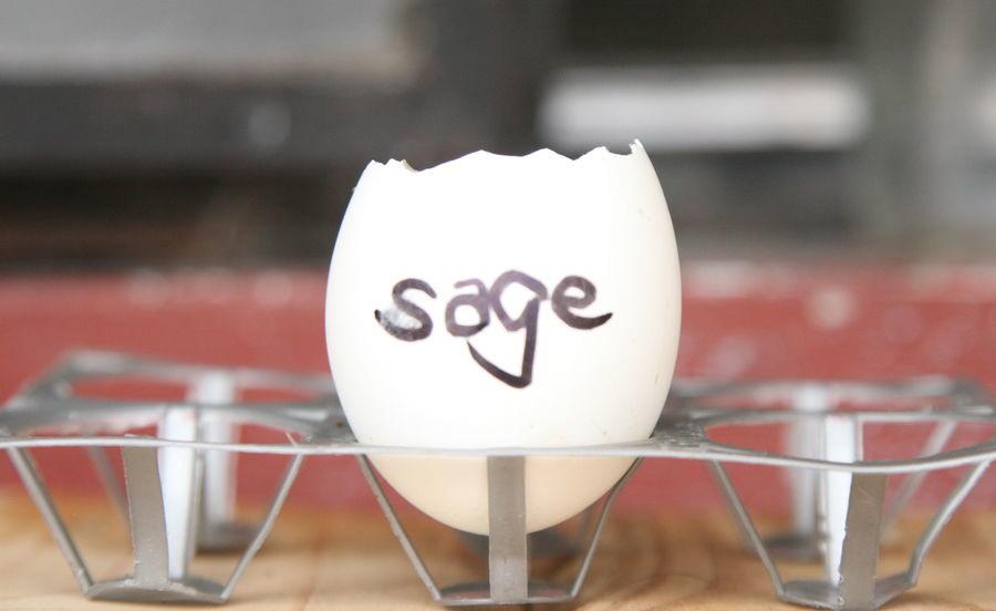 Скорлупу нужно поставить в лоток для яиц