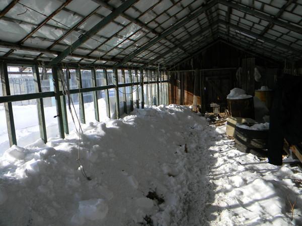 Снег на тепличных грядках