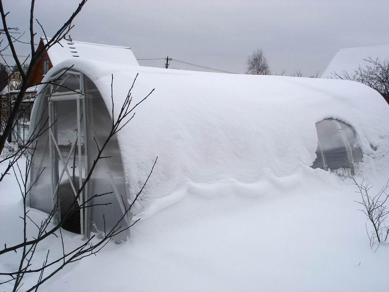 Снег с теплицы нужно регулярно убирать