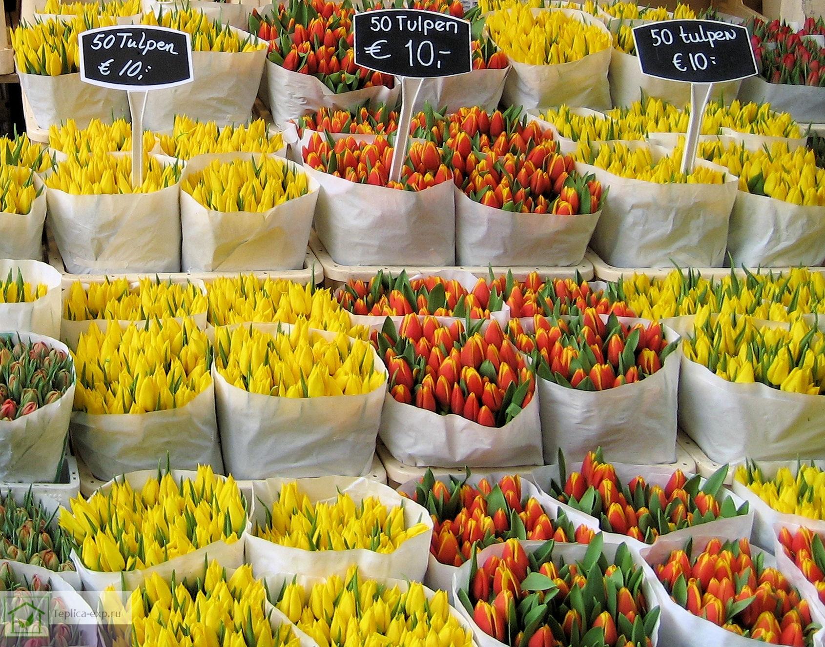 Спрос на цветы сильно зависит от сезонности