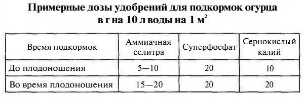 Таблица доз удобрений для подкорма огурцов