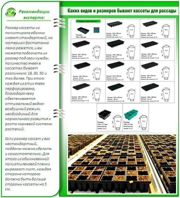 Виды и размеры рассадных кассет