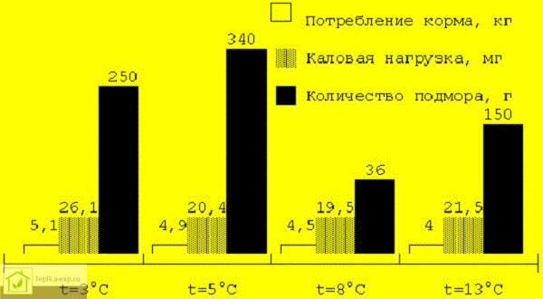 Влияние температуры в зимовнике на результаты зимовки пчелиных семей