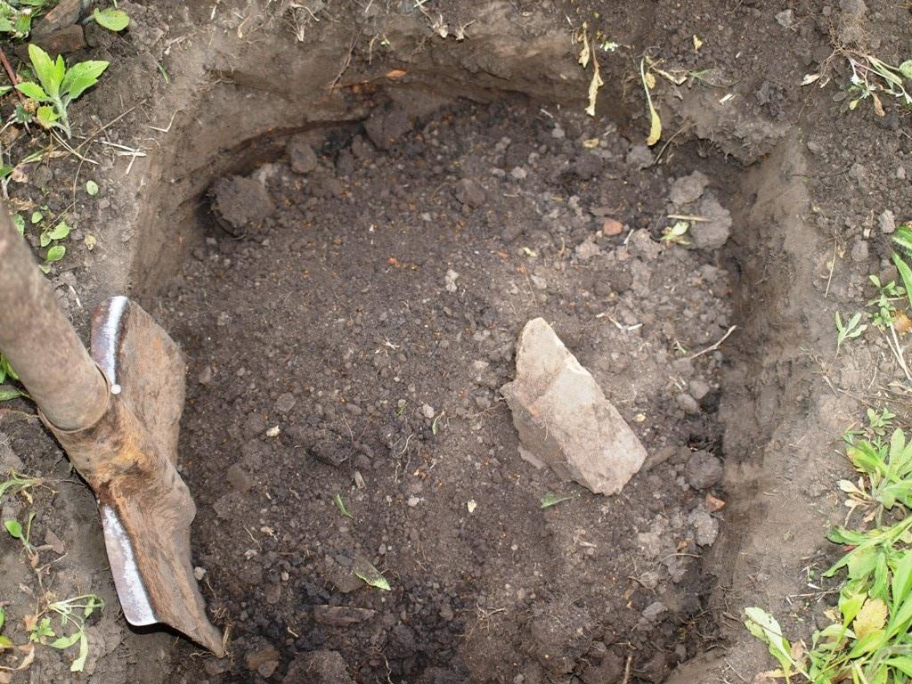 Вначале нужно выкопать небольшую яму