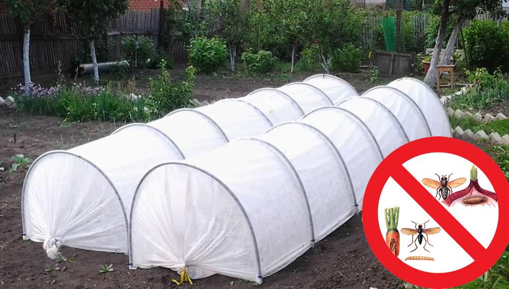 Защита растений от вредителей с помощью укрывного материала
