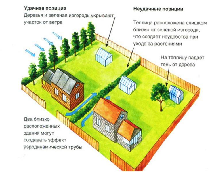 Зависимость расположения теплицы от тени кустарников