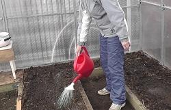 Последующая обработка почвы ЭМ-препаратами
