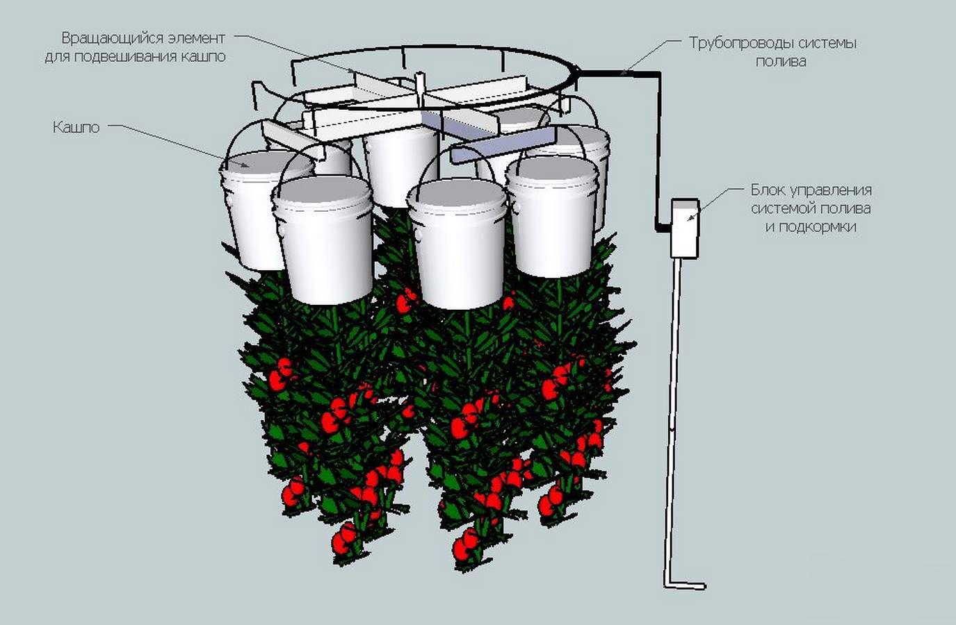 Автоматический полив растений в теплице