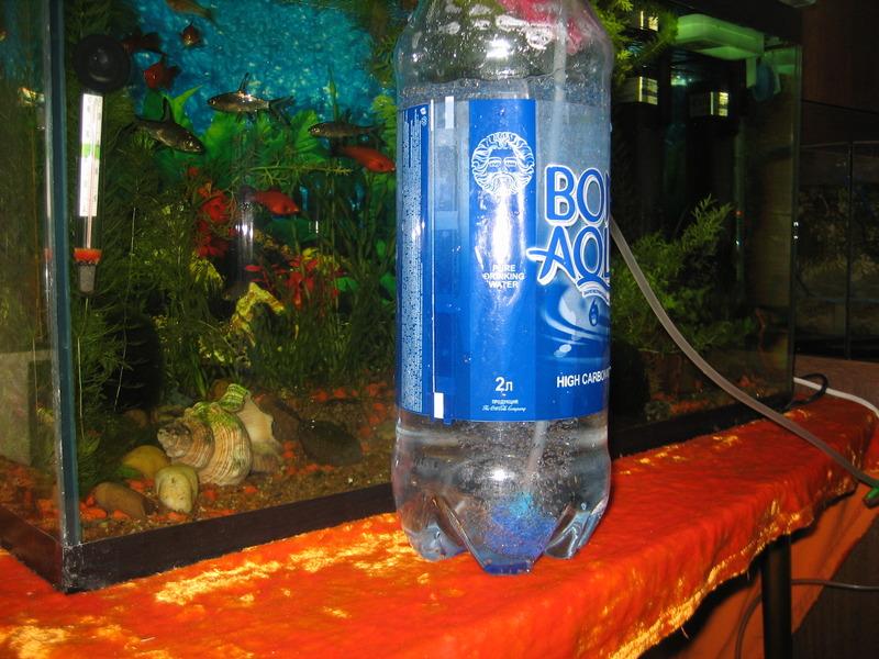 Барботирование семян в пластиковой бутылке при помощи аквариумного компрессора