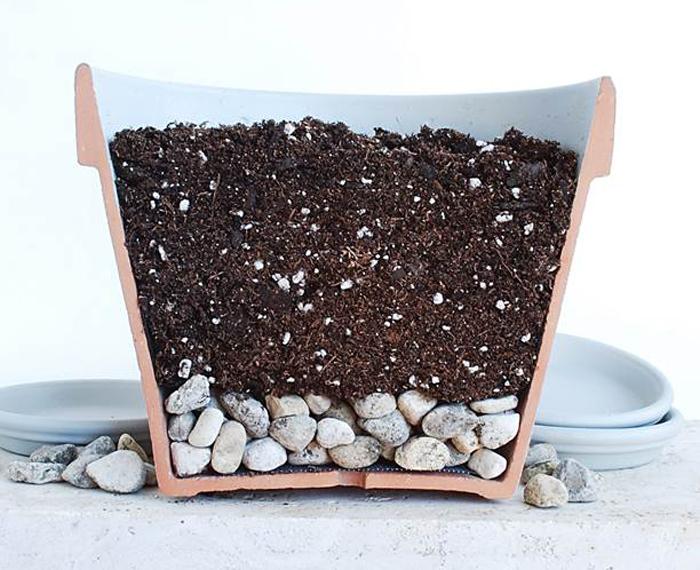Дренажный слой с землей для посадки рассады