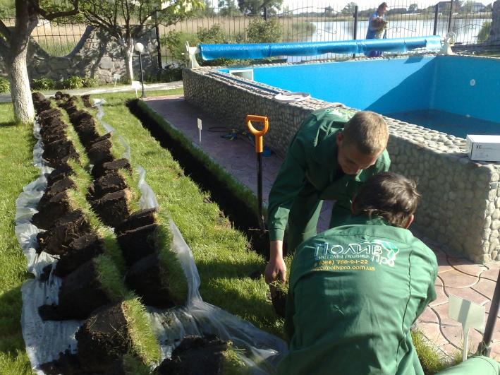 Если система устанавливается под уже готовый газон, то выкопанные его фрагменты и почву следует аккуратно уложить на пленку