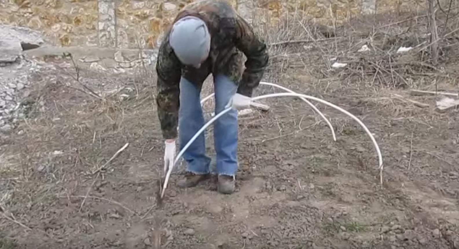 Готовые дуги втыкаются в грунт