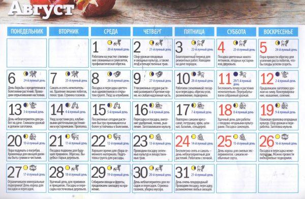Лунный календарь садовода на август 2018 года