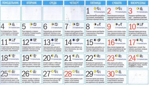 Лунный календарь садовода на сентябрь 2018 года