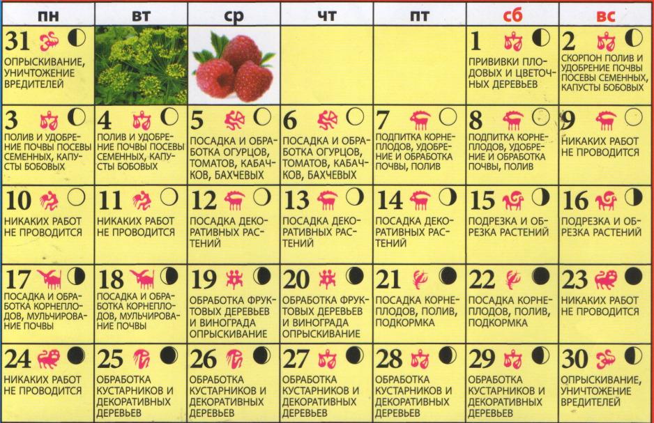 Лунный посевной календарь на август 2017 года