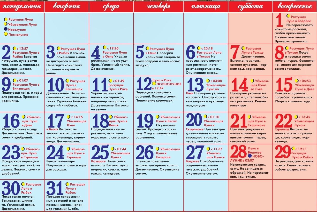 Лунный посевной календарь садовода на январь 2017 года