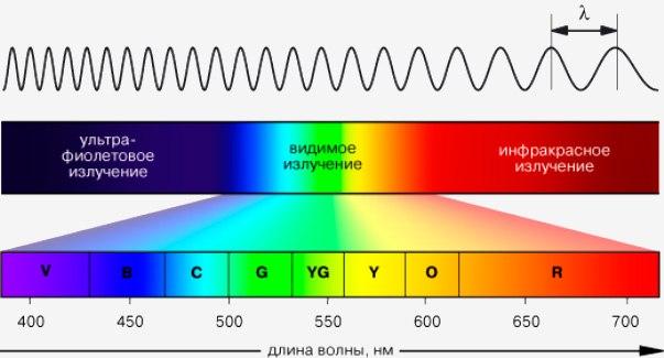 Некоторые диапазоны спектра позитивно влияют на рост растений