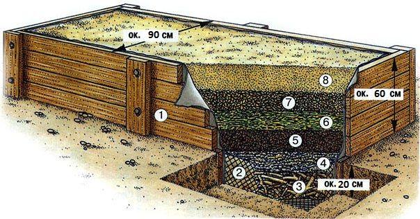 Один из примеров короба для теплой грядки. 1. Доски для ящика 2.Сетка для защиты от полёвок 3.Древесные отходы или измельчённые ветки  4.Газеты и картон 5.Древесную стружку и опилки 6.Свежие садовые отходы 7.Осенние листья из компостной кучи 8.Компост с землёй