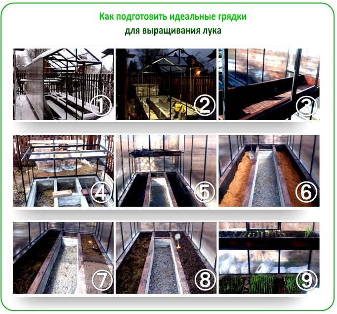 Подготовка грядок для выращивания зеленого лука