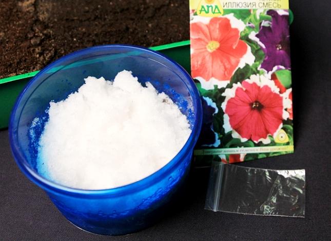Посев семян петунии на снег