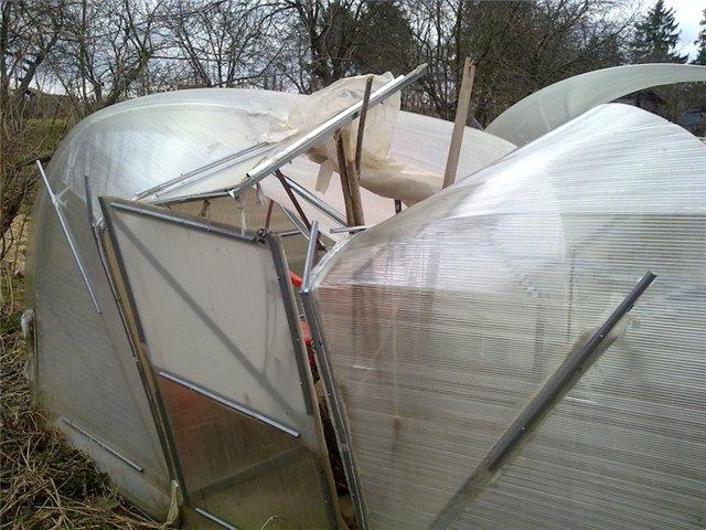 Последствия покупки некачественной теплицы из поликарбоната