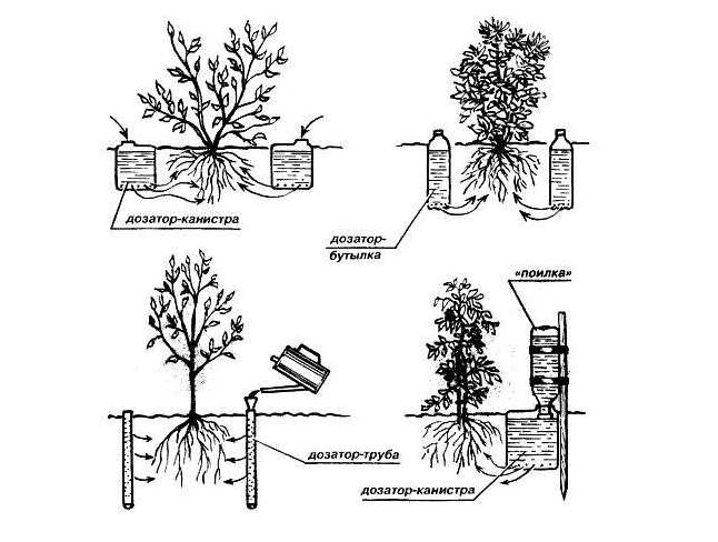 Пример использования различных видов емкостей