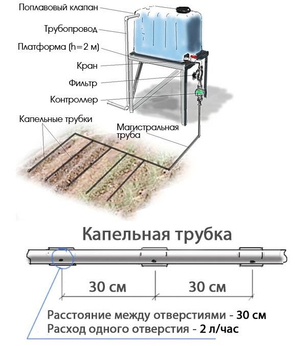 Пример самодельной системы автоматического капельного полива с питанием из бака
